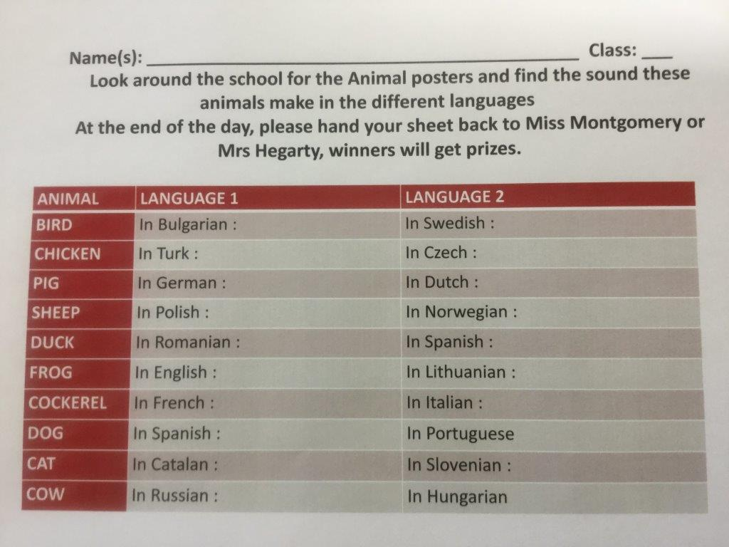 Thornhill College European Day Of Languages 2017